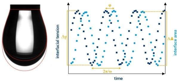Oscillating pendant drop shape analysis
