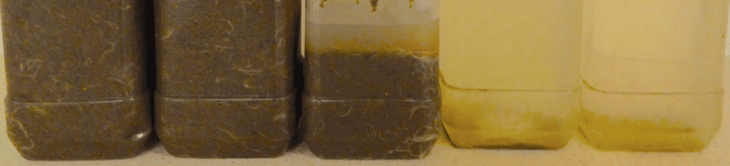 A few samples from along a wastewater treatment process. We can see the first bottle is completely inhomegenous with some filamentous particulates. As you move along the bottles, it's clear to see some sedimentation has occured and the water becomes less turbid.
